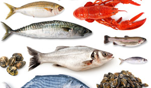 5 Reasons to Eat More Fish