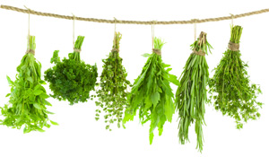 Spring Herb Guide: 11 Seasonings To Brighten Your Meals