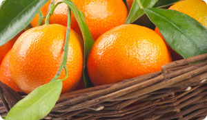 Could Tangerines Prevent Obesity?